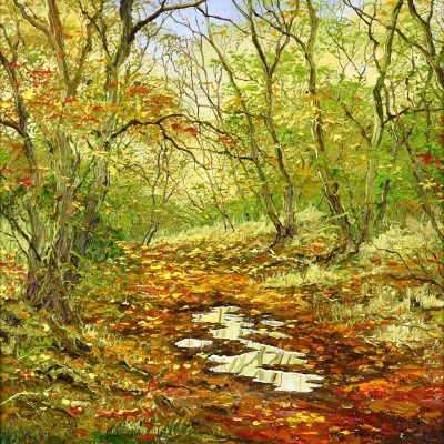 Terry_Evans_Woodland_Puddle_NoFrame