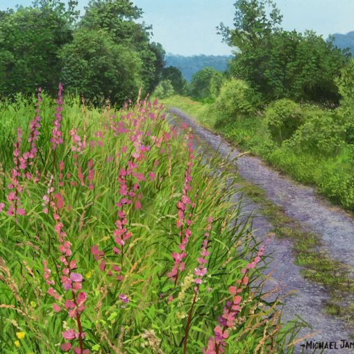 M-J-Smith-Purple-Loosestrife-PRODUCT