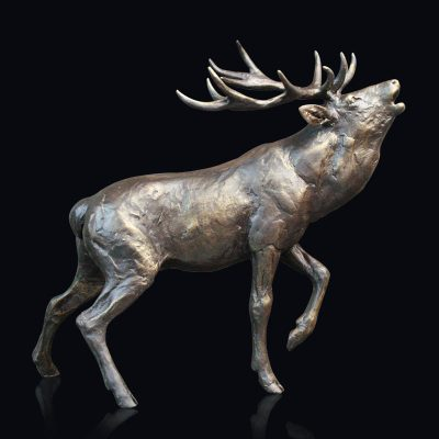 888-Stag-Roaring-PRODUCT