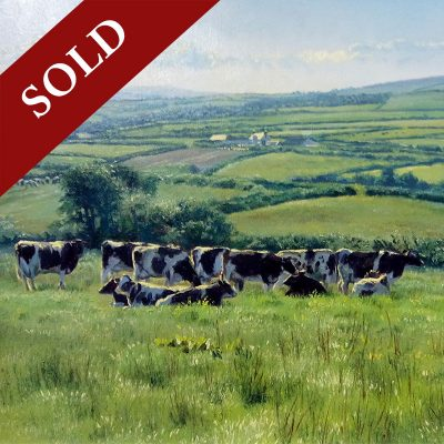 Stephen-Hawkins-Pastures-New-PRODUCT-SOLD