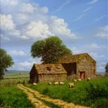 Edward-Hersey-Sheep-Grazing-NOFRAME