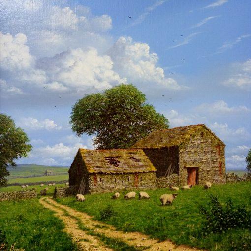 Edward-Hersey-Sheep-Grazing-PRODUCT