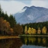 M.J.-Smith-Autumn-Lake-CLOSEUP