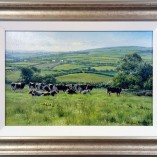 Stephen-Hawkins-Pastures-New-FRAMED