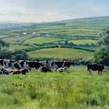 Stephen-Hawkins-Pastures-New-NOFRAME