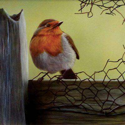 Wayne-Westwood-Robin-PRODUCT