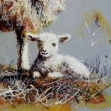 Ruby-Keller-Ewe-And-Lamb-CLOSEUP